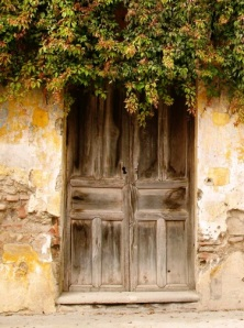 worn-old-wooden-door-img_5225