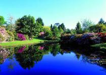 reflecting_pool