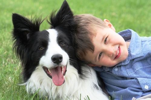 boyanddog
