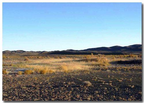 Oasis of Khul Mortiin Us, Roerich's Dzogo-usu