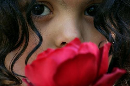 child_rose