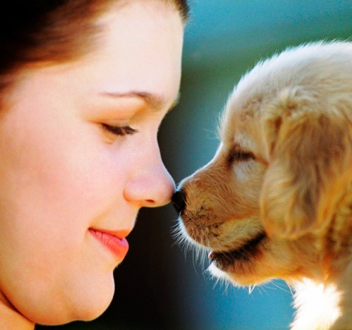 Do animals have feelings and emotion beyond instinct?