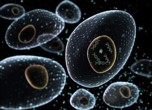 cells_alive