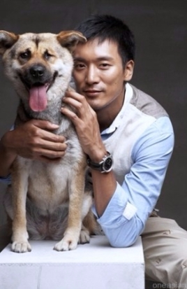 korean-animal-welfare