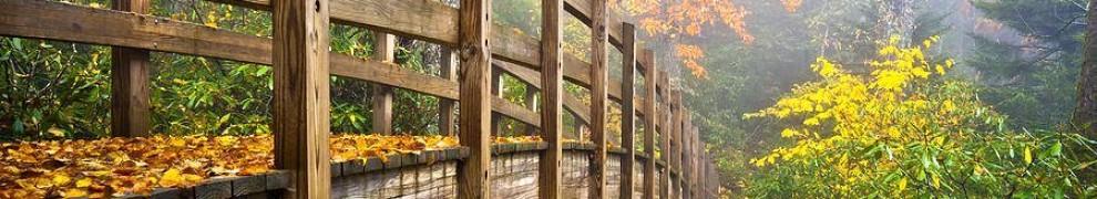 cropped-woodbridge.jpg