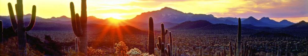 cropped-the-best-desert-sunset-ever.jpg