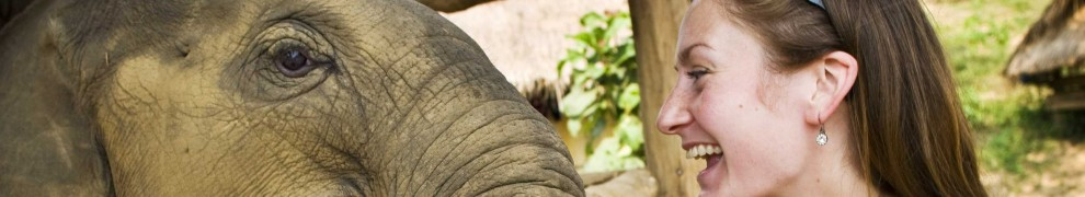 cropped-elephant-sanctuary-in-thailand.jpg